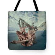Eye Of The Driftwood Tote Bag
