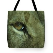 Eye Of The Lion Tote Bag