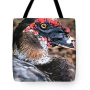 Eye Of The Muscovy Duck Tote Bag