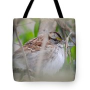 Eye On The Sparrow Tote Bag