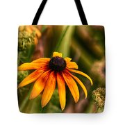 Eye To The Sun Tote Bag