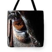 Eyeball Reflection Tote Bag