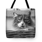 Eyecat Tote Bag