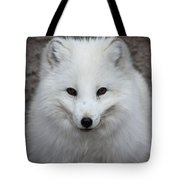 Eyes Of The Arctic Fox Tote Bag