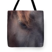 Eyes Of The Soul Tote Bag