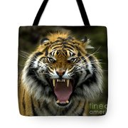 Eyes Of The Tiger Tote Bag