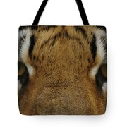 Eyes Of The Tiger Tote Bag by Sandy Keeton
