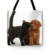 F1b Goldendoodle Pup With Kitten Tote Bag