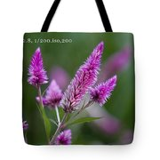 F2 Point 8 1 200th Sec Iso200 Tote Bag