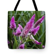 F32 1 Sixth Second Iso200 Tote Bag