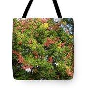 Fabulous Florida Fall Tote Bag
