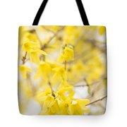 Fabulous Forsythia Tote Bag