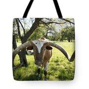 Fabulous Texas Longhorn Tote Bag