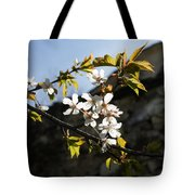 Facades And Fruit Trees - The Church And The Plum Tote Bag