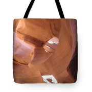 Face In The Stone Tote Bag