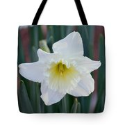Face Of A Daffodil Tote Bag