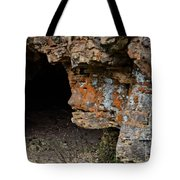 Natures Sclupture - Rock Face Tote Bag