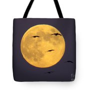Face On The Moon Tote Bag