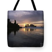 Face Rock Beach Bandon Oregon Tote Bag