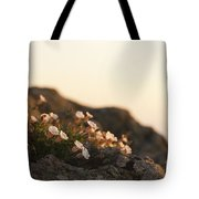 Face The Light Tote Bag