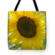 Face To Face With A Sunflower Tote Bag