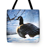 Facing The Cold Dawn Tote Bag