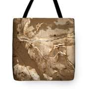 Facing The Past Tote Bag