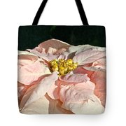 Faded Coral Tote Bag