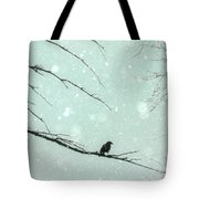 Abstract Faded Winter Tote Bag