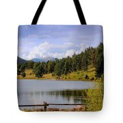 Fading Rainbow Tote Bag