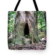 Fairy Blessings Tote Bag