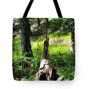Fairy Dwelling Tote Bag