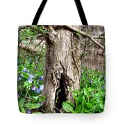 Fairy Place Tote Bag