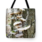 Fairy Staircase Tote Bag