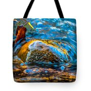 Fairy Tale Waters Tote Bag