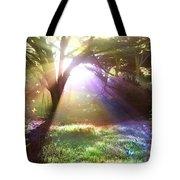 Fairyland Sunset Tote Bag