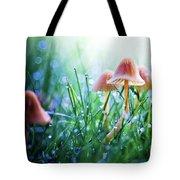 Fairytopia Tote Bag by Sylvia Cook