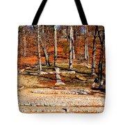 Faith And Freedom Tote Bag