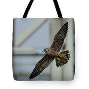 Falcon Flying By Tower Tote Bag