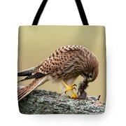 Falcon's Breakfast  Tote Bag