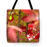 Fall 08-007 Tote Bag