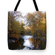 Fall Along The Wissahickon Tote Bag