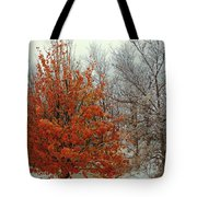 Fall And Winter 2 Tote Bag
