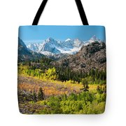 Fall Aspen Below The Sierra Crest Tote Bag