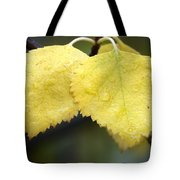 Fall Aspen Leaves After A Rain Tote Bag