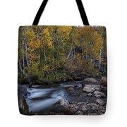 Fall At Bishop Creek Tote Bag