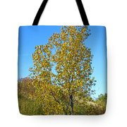 Fall At The Dunes Tote Bag