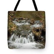 Fall At The Lower Falls Tote Bag