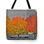 Fall At The Mann Tote Bag