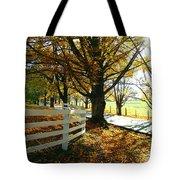 Fall Back Roads Tote Bag